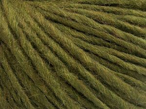 Fiber Content 50% Merino Wool, 25% Acrylic, 25% Alpaca, Brand Ice Yarns, Green, Yarn Thickness 5 Bulky  Chunky, Craft, Rug, fnt2-65078