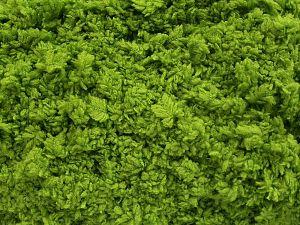 Fiber Content 100% Micro Fiber, Brand Ice Yarns, Grass Green, fnt2-67517